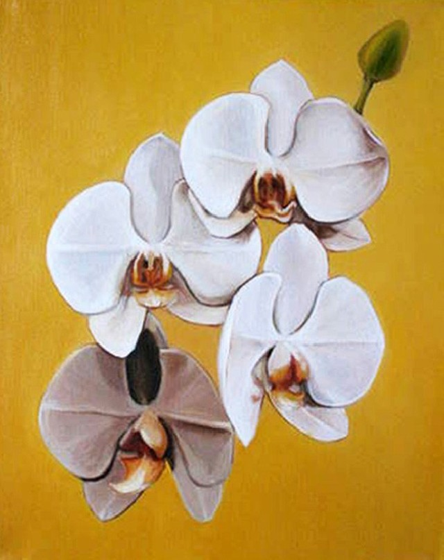 Orchid 1 original painting by Daiva Kunigėnienė. Oil painting