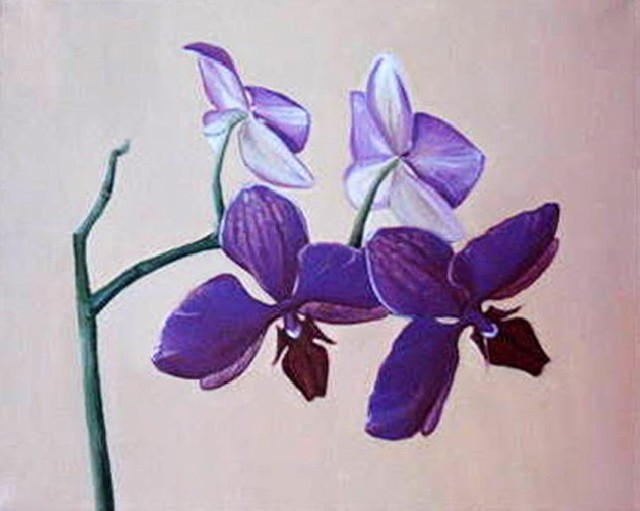 Orchid 5 original painting by Daiva Kunigėnienė. Oil painting