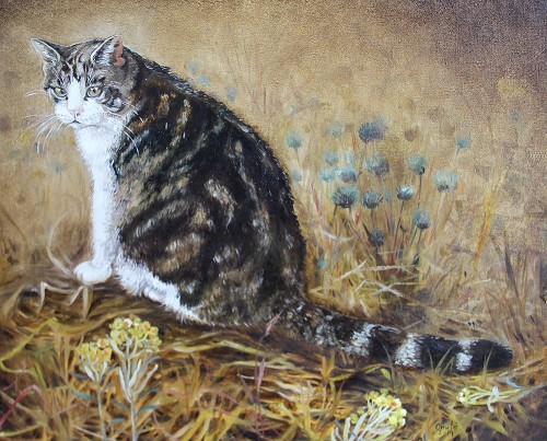 Cat Among Immortelle original painting by Onutė Juškienė. Oil painting