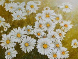A Flock Of Daisies