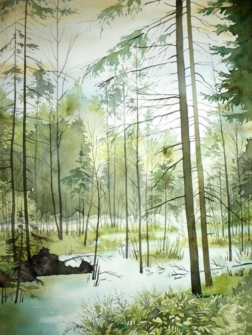 Flooded Creek original painting by Algirdas Zibalis. Watercolor painting
