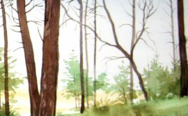 Shore Pines original painting by Algirdas Zibalis. Watercolor painting