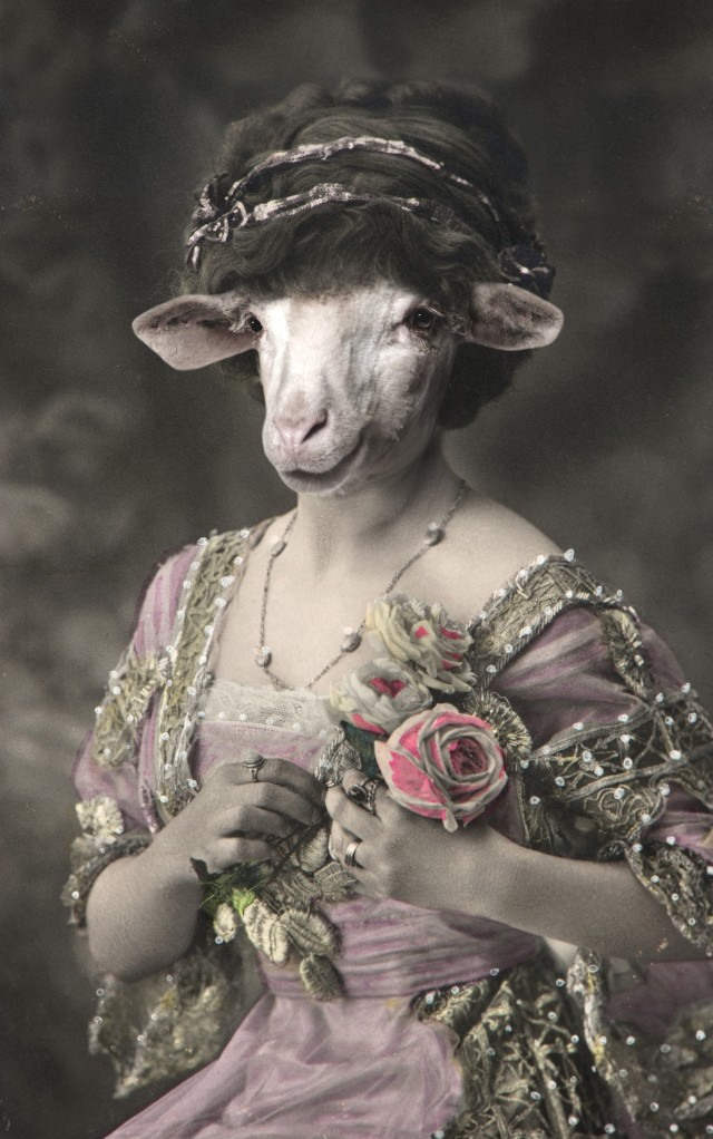 Miss Sheep original painting by GetArtFactory. Fantastic