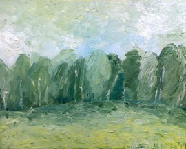 Grassland And Trees