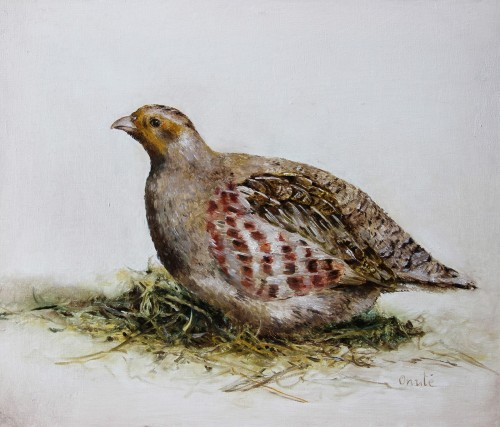 Partridge original painting by Onutė Juškienė. Animalistic Paintings