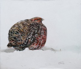 Partridge original painting by Onutė Juškienė. For the kitchen