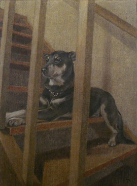 Dog on the Stairs