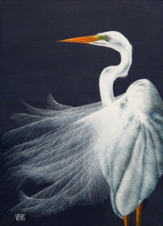 Egretta alba I original painting by Laima Žeimienė-Vienis. Animalistic Paintings
