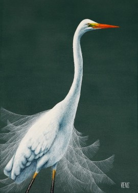 Egretta alba II original painting by Laima Žeimienė-Vienis. Animalistic Paintings