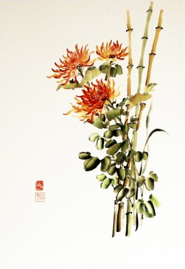 Red Ochre Chrysanthemum