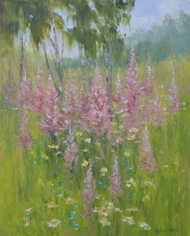Blooming Lupines