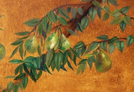 Pears' Branches
