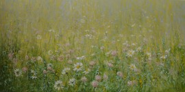 Meadow With Clover