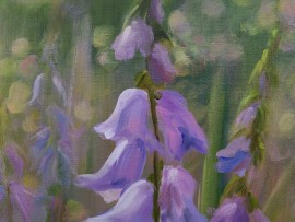 Meadow Flowers (Bluebell)