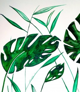 Monstera leaves - born here - belongs to the World