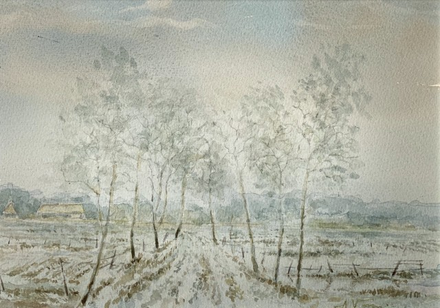 Winter's Landscape