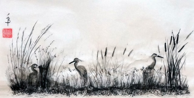 Herons in the Bulrush