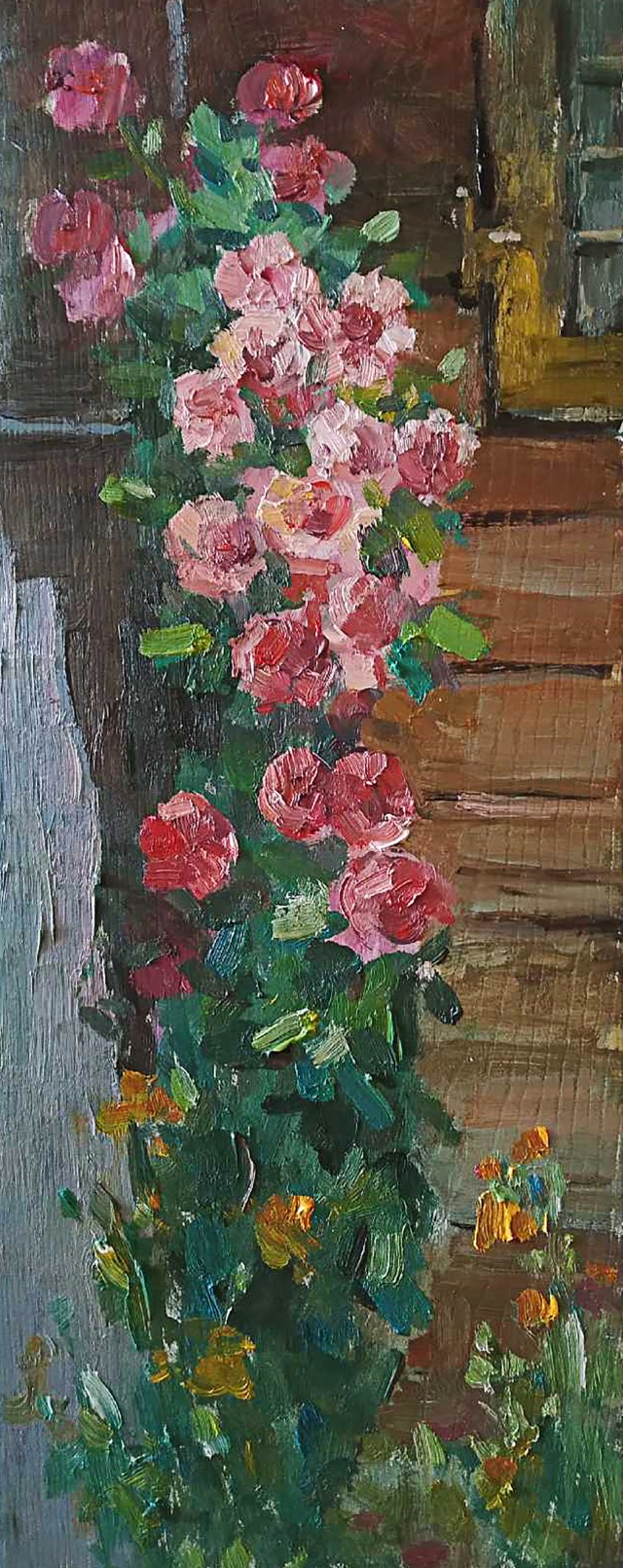 Blossoming Of Roses
