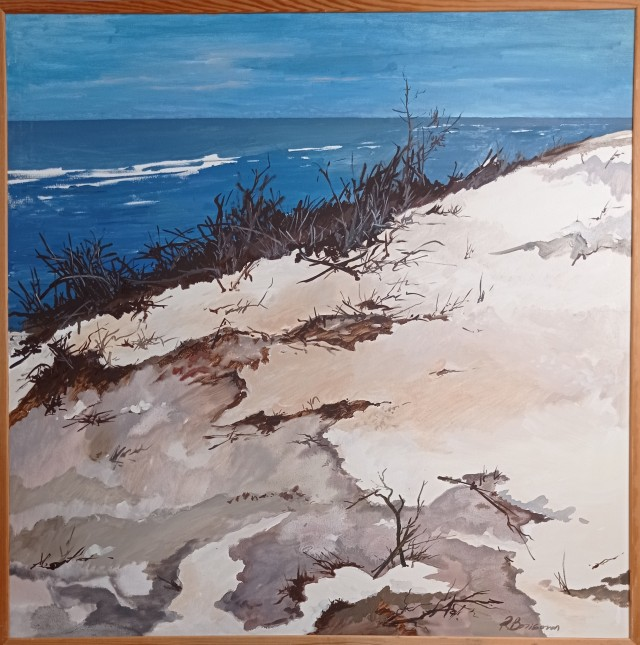 Sea and Dunes in Winter